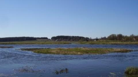 Отчет с рыбалке на реке Неман в Минской области