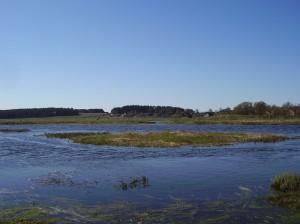 Река Неман в Минской области