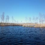 Долгожданная поездка на Нарвское водохранилище. 7-9 мая.