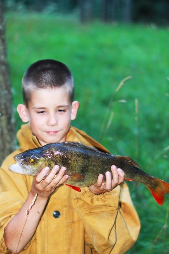 рыбалка на нарвском