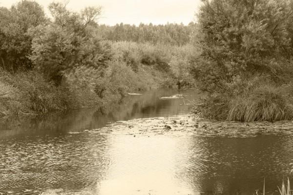 Река Каспля Смоленская область