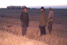 Охотники составили список причин процветания браконьерства