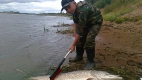 9-летний кировский мальчишка поймал щуку с себя ростом