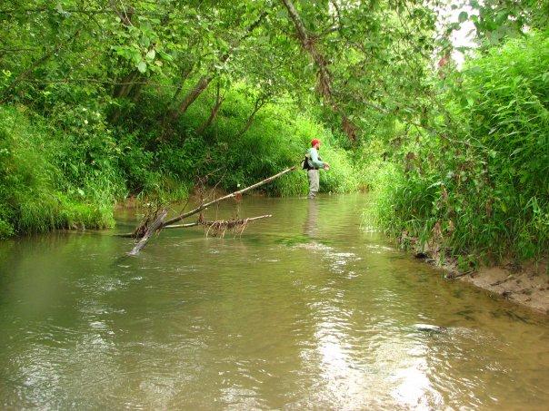 Ловля на ультралайт на лесной речке