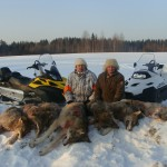Охота на волка в Вологодской области
