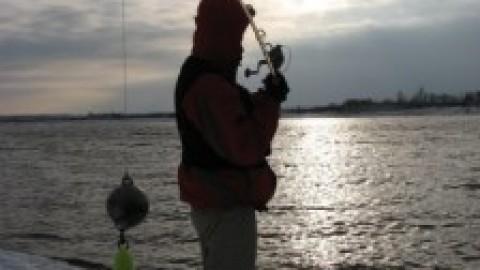 Квазицвет приманки нашими глазами, или как видит наши приманки рыба (Теория, сильно связанная с практикой  не одного сезона)
