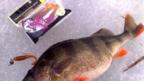 Силикон Crazy Fish. Испытание на реальной тренировке