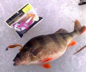 отзывы о резине Crazy Fish