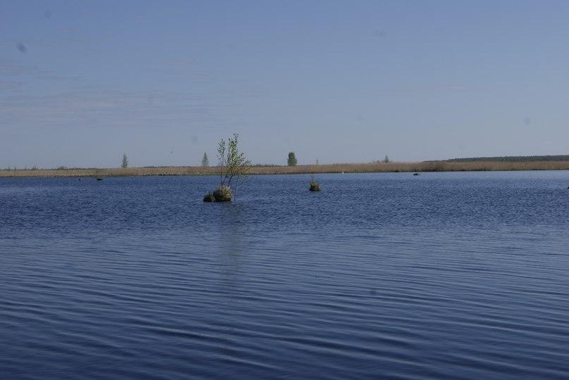рыболовная база на нарвском водохранилище низы
