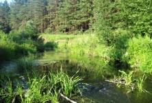 Вечер на малой речке