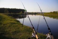 Что делать, если  рыба не клюет на фидер