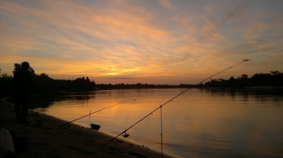 какая рыба ловится ночью летом