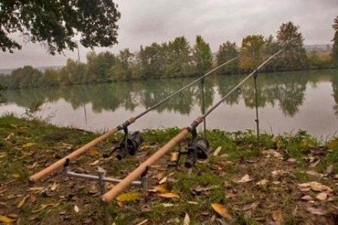Советы фидерной ловли для начинающих рыбаков