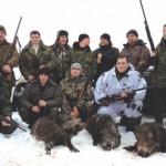 Особенности охоты на кабана загоном