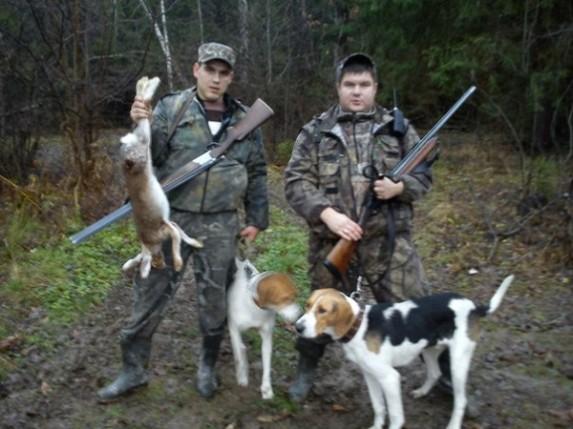гончие собаки и охотники