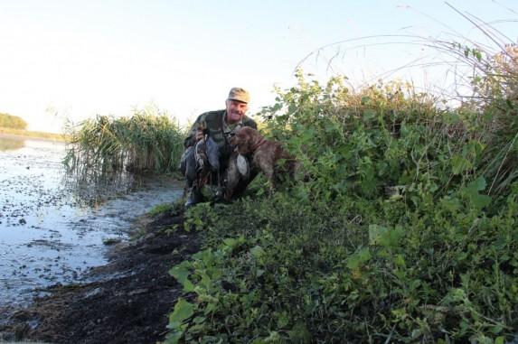 Охота на утку