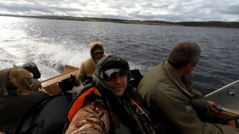Тайга у Белого моря