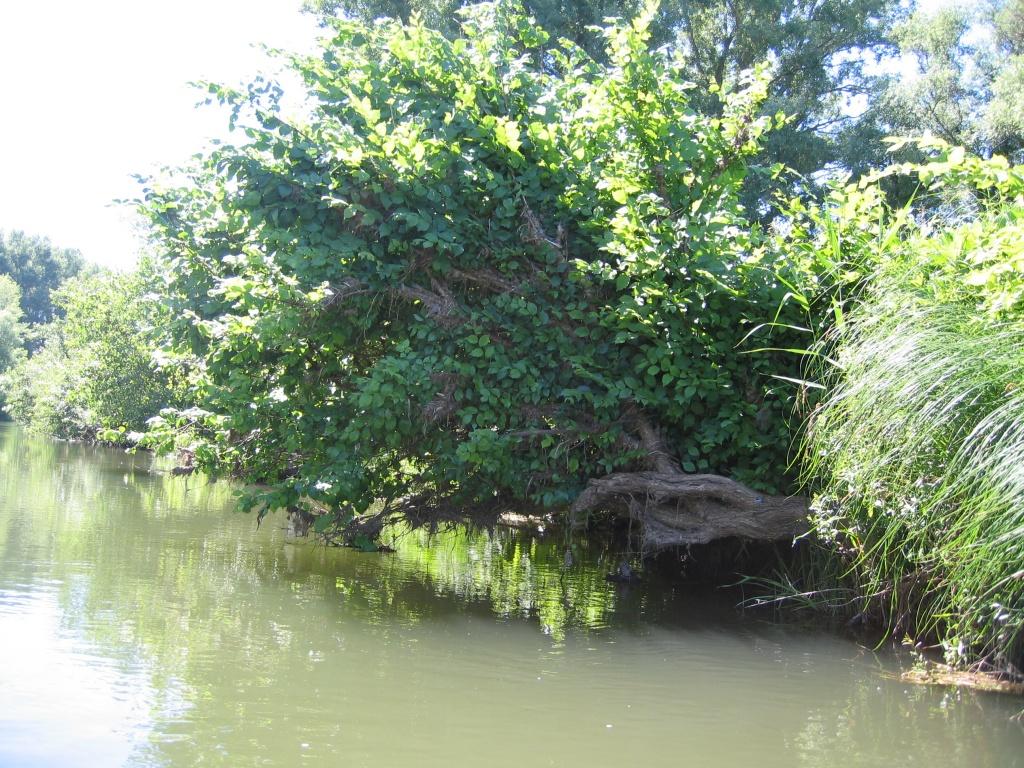 Реки Оренбуржья