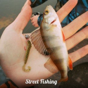 Логотип группы ([StreetFishing|Городская Рыбалка])